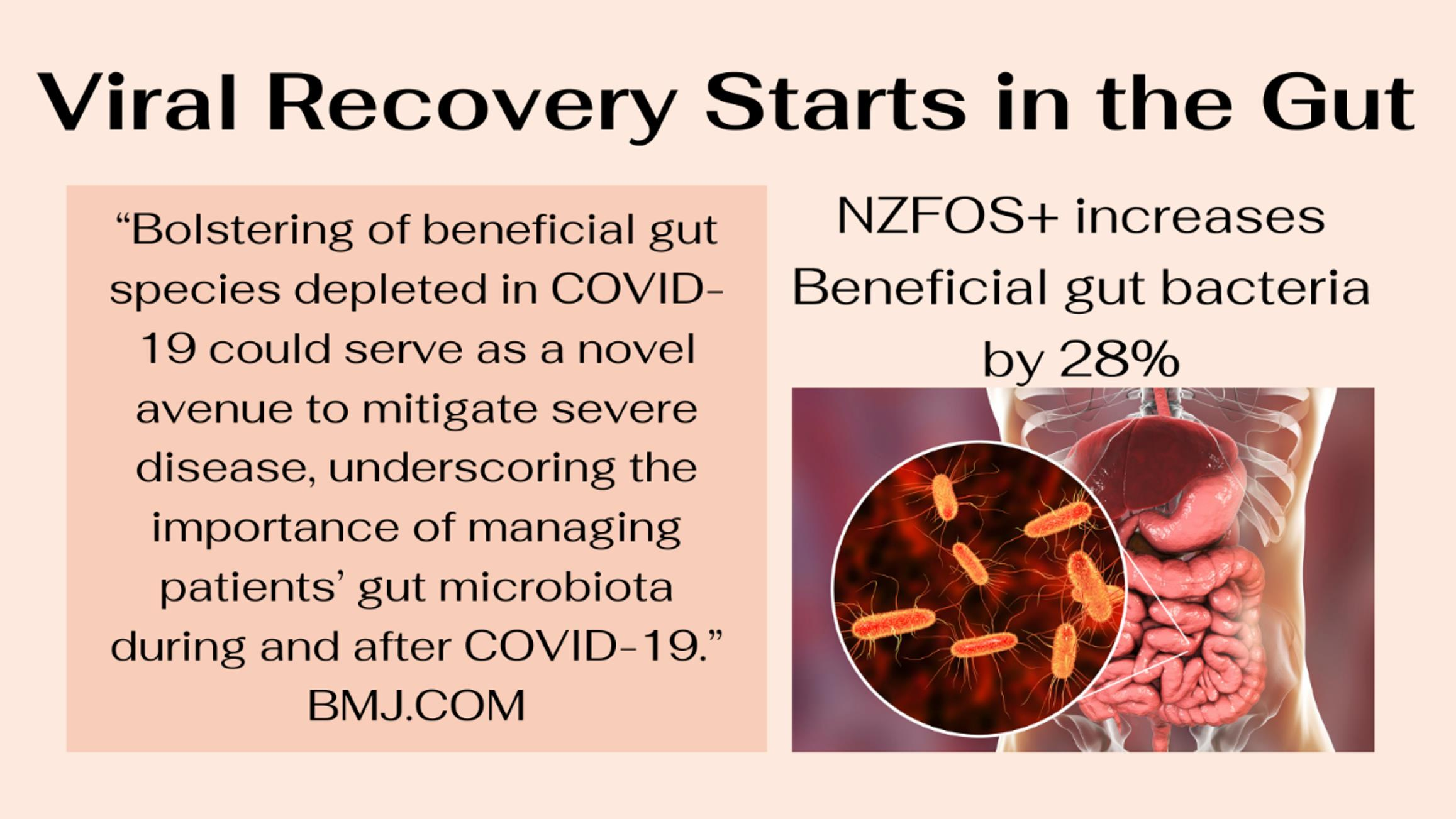 Viral Recovery starts in the gut